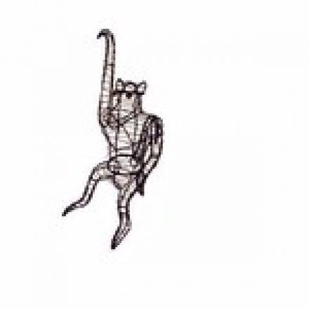 Aap hangend 66x30x28 cm (frame)