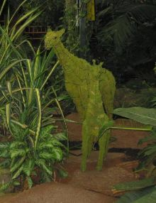 Giraffe 250x178x63 cm met mos