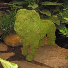 Leeuw 94x132x46 cm met mos