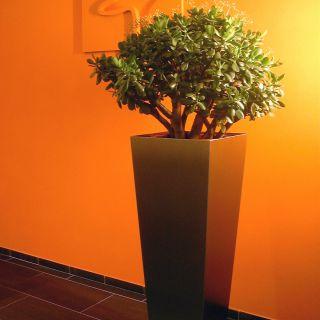 Trapezium RVS bloembak 100 cm