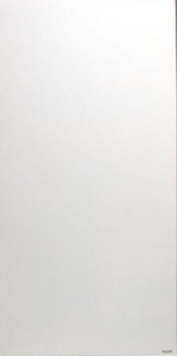 Schutting aluminium 90 x180 cm zonder figuur