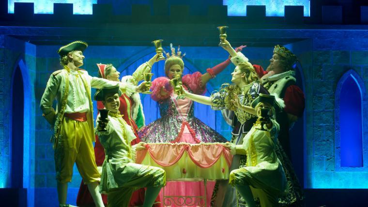 Doornroosje de musical 2012/2013