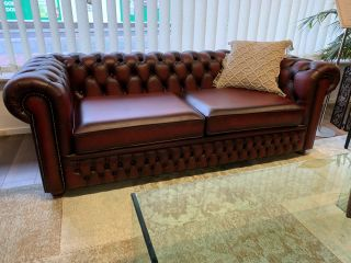 SHOWROOMMODEL The Wales chesterfield 3 zits bank Oxblood Red