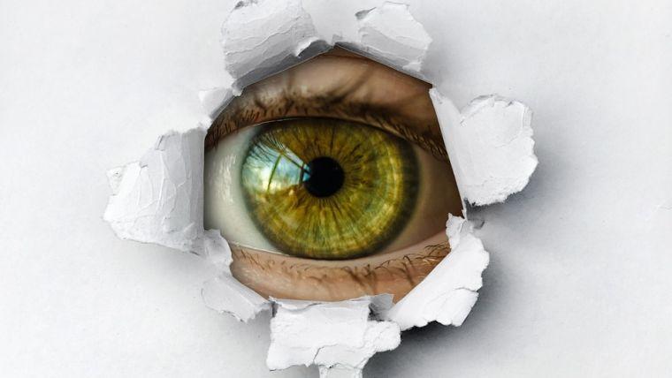 Spionagesoftware