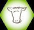 Сигналы коров