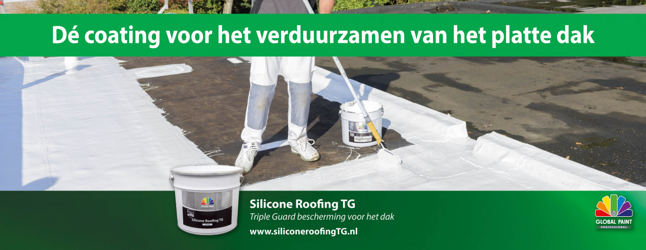 Silicon Roofing TG