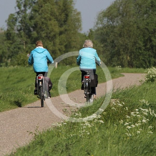 Fietsen op de dijk Maas en Waal