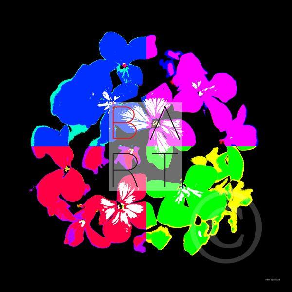 B-ART hortensia