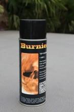Spuitbus Burnies