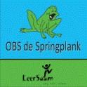de_springplank