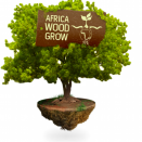 Africa Wood Grow