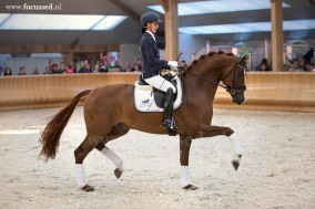 Eye Catcher and Estoril selected for WC Young Dressage Horses