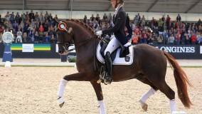 Kirsten Brouwer scoort met Sultan des Paluds zilver op de WK jonge paarden in Ermelo