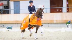Sultan des Paluds naar hoogste score in Delft