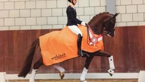 Sultan des Paluds Utrechts Kampioen klasse Z2