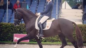 Alle paarden dik door naar Pavocup finale