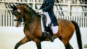 De eerste competitie van Evaldi L in de USA met zijn nieuwe amazone Ida Mattisson