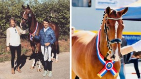Kolana kampioen van Friesland