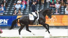 Kirsten Brouwer scoort met Jack Daniels een 3e plaats in finale Pavocup 2018