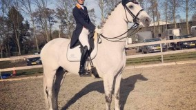 Everlast-Lindh wint in de Prix St Georges