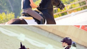 Beide paarden Joyride en Iwardo AF geselecteerd voor de finale Longines/WBFSH jonge paarden