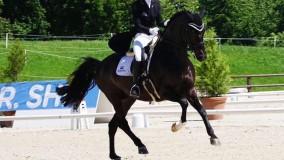 Urielo du Houx wint met Kirsten de Intermediair II in Haras de Jardy
