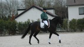 Sandron een 4e plaats in Woudenberg