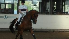 Viegro wint tweemaal in Leusden met Annemarie