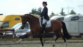 Een mooie 2e en 3e plaats voor Kirsten Brouwer met Velvet Dream in Almelo
