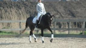 Rubilat met Eline reservekampioen klasse B