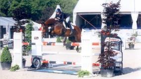 35 junioren aan start in Etten-Leur waarvan slecht 5 foutloos