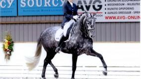 Tweemaal een 1e plaats voor Kirsten met Zandafanory in Westmaas