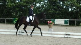 Winnend debuut voor Annemarie met Binoeska  in Nieuwe Wetering