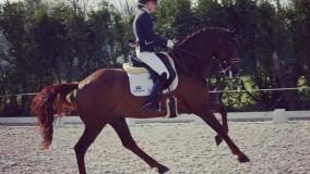 Een 1ste en 2e plaats in de klasse ZZ zwaar voor Cynthia met Zandberg
