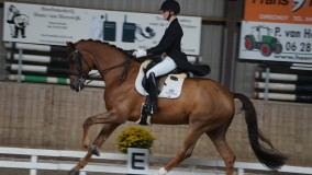 Tom wint met Skywalker junioren/young riders rubriek