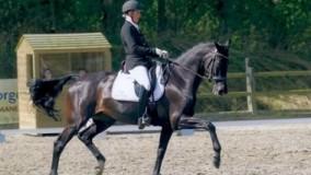 Annemarie Brouwer scoort met Binoeska tweemaal een 1ste plaats in Soest