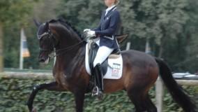 Mooi debuut voor Kirsten Brouwer met KWPN hengst Tuschinski in de klasse Prix St Georges