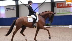 Skywalker wint de selectie ZZL provinciale kampioenschappen Utrecht