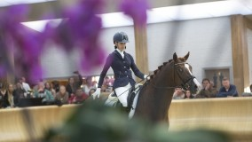 Last selection World Championships Young Dressage Horses