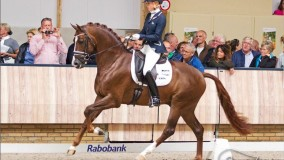 Eye Catcher wins Pavo Cup with a 10 from Eva Möller