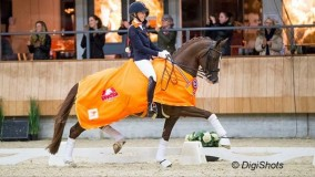 Kirsten did a wonderfull job with Sultan des Paluds a score of 75,2%