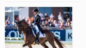 Sutan des Paluds sterk terug na WK zilver jonge paarden