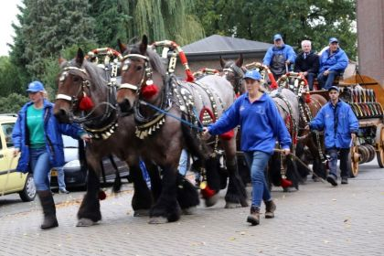 Paardenmarkt 2019