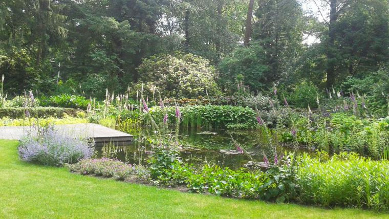 Bostuin met vijver Bilthoven