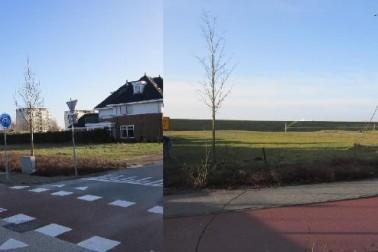 Damhert 1 en Boommarter 2 Hoogeveen