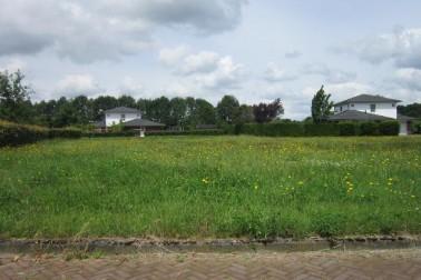 Bolmaat/Schaapmaat/Koemaat Westerbork