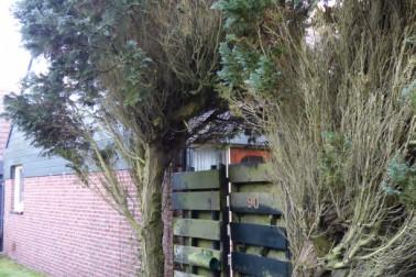 Duinschooten 12 090 Noordwijkerhout