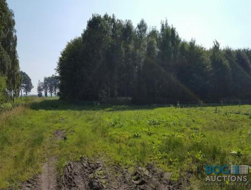 Percelen grond Klazienaveen Noord