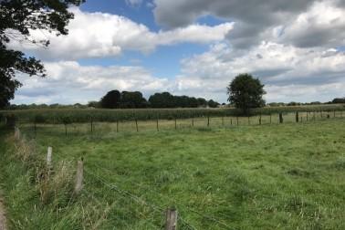 perceel agrarische grond gelegen aan de Voorste Kerkweg Beekbergen