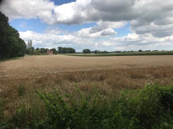 perceel agrarische grond gelegen aan de Ruggeweg en Kerkeveld Beekbergen